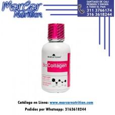BIO COLLAGEN (Colágeno Hidrolizado) X 16 ONZ